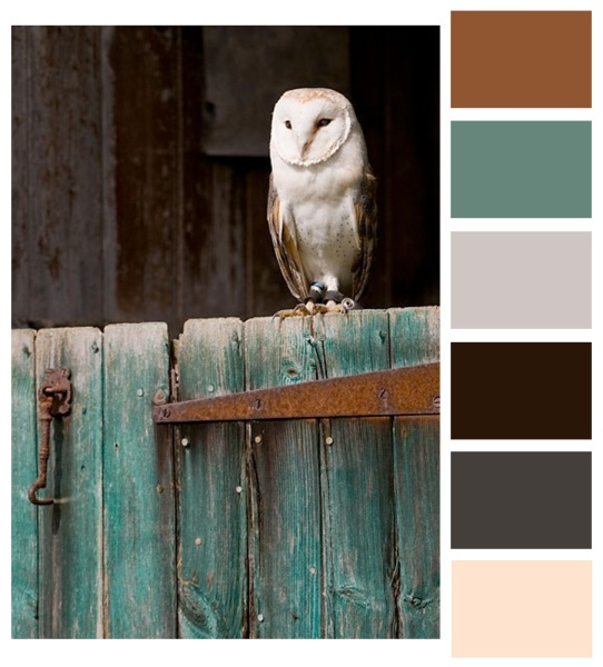 another color palette