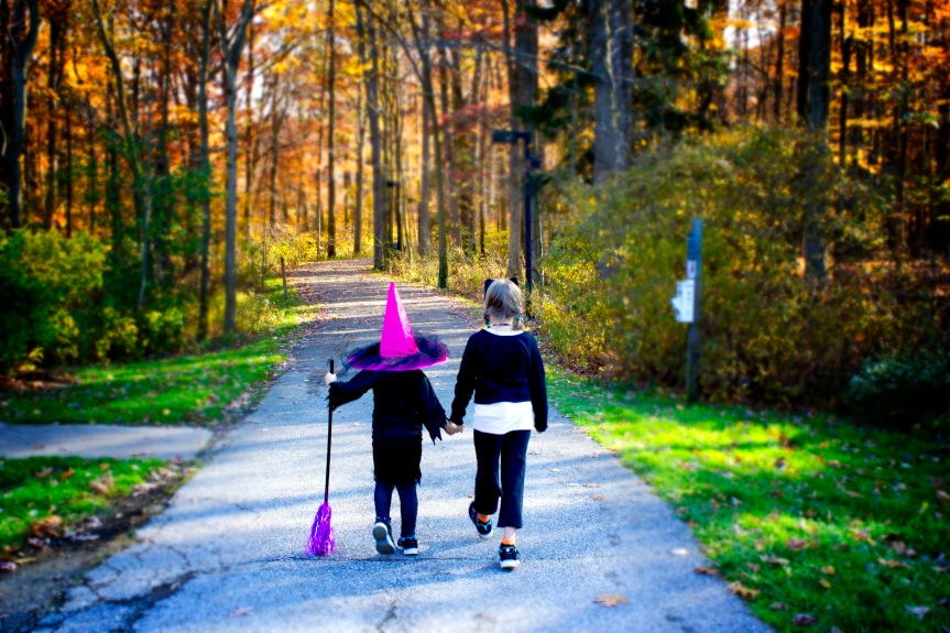 cat and witch walking