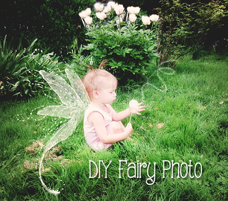 fairy photo how to
